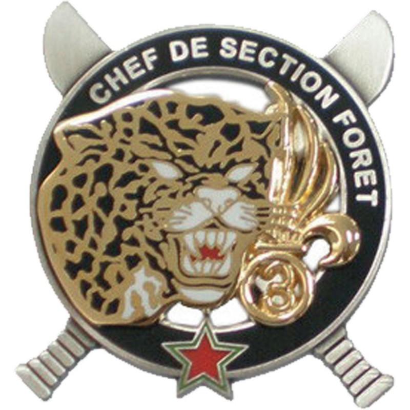 CEFE CHEF DE SECTION