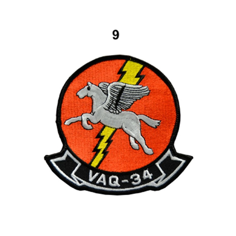 VAQ-34 PEGASUS