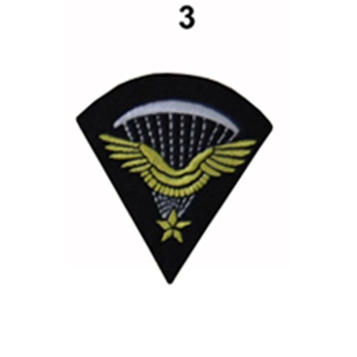 1er BREVET PARA FR. BREVET INF. DE L'AIR MANCHE